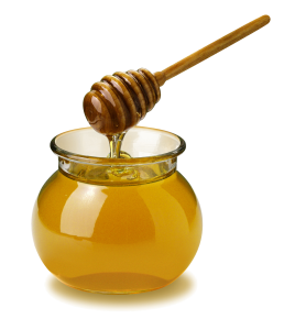 honey-kills-bacteria1 png
