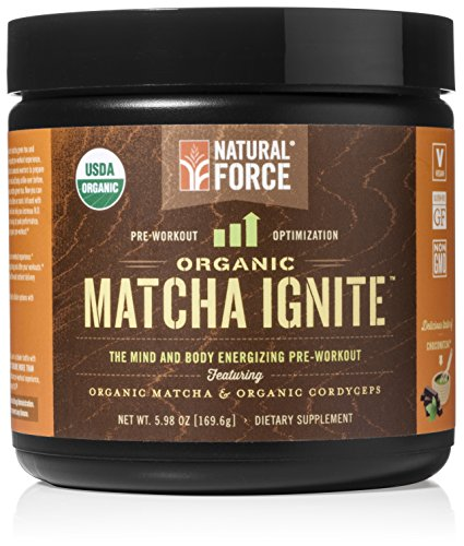 Natural Organic Workout ORGANIC ChocoMatcha
