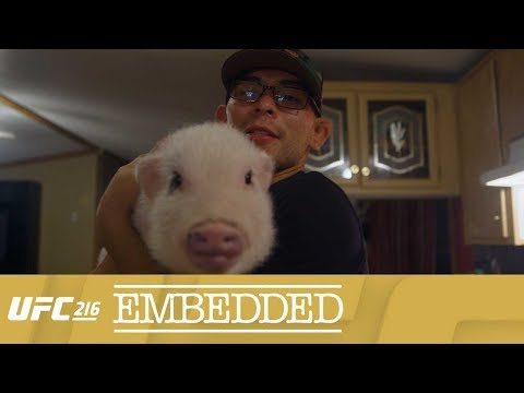 UFC 216 Embedded: Vlog Series – Episode 2