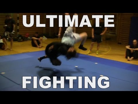 Ultimate Fighting, erster Versuch – Dummesaulol