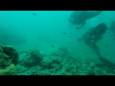Scuba Diving in India | Extreme Sports India |
