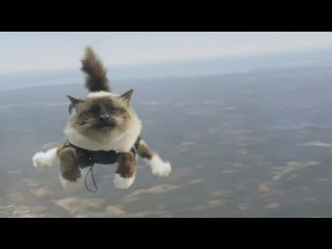EXTREME SPORTS Video 1