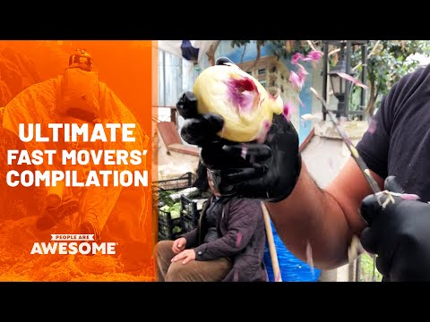 Speediest Workers & Fastest Movers | Ultimate Compilation